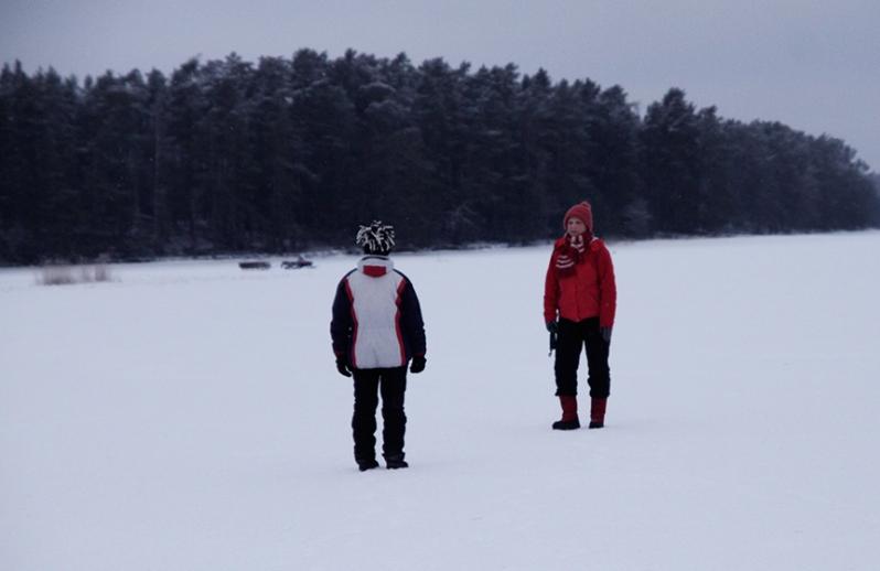 talvi_mervitarja